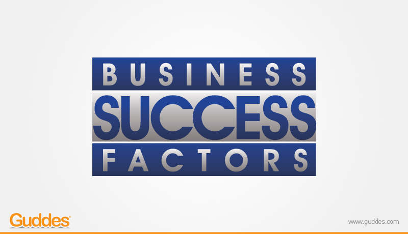Business Success Factor  Logo Design